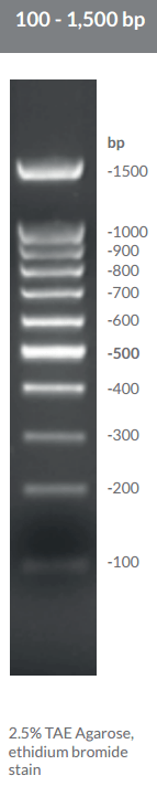 100 - 1,500 bp DNA Ladder