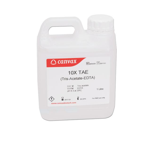 TAE Buffer (10x) (pH 8.3)