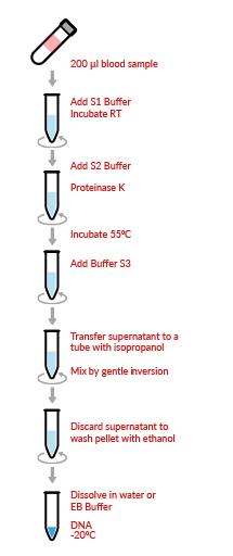 HigherPurity™ Blood Genomic DNA Extraction Kit Protocol