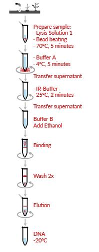 HigherPurity™ Soil DNA Isolation Kit Protocol