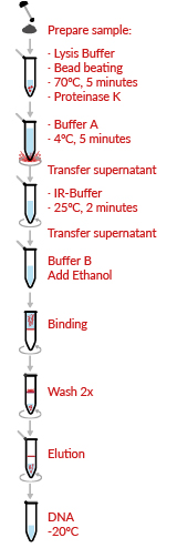 HigherPurity™ Stool DNA Isolation Kit Protocol