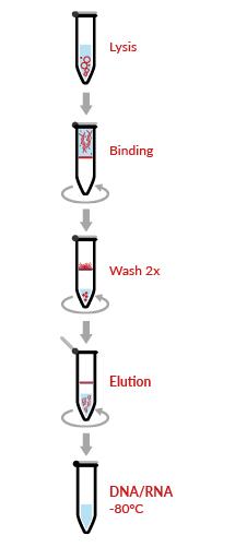 HigherPurity™ Viral DNA RNA Mini Spin Kit Protocol