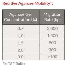red dye agarose mobility