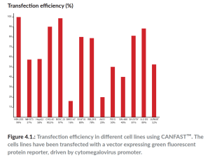 transfection efficiency