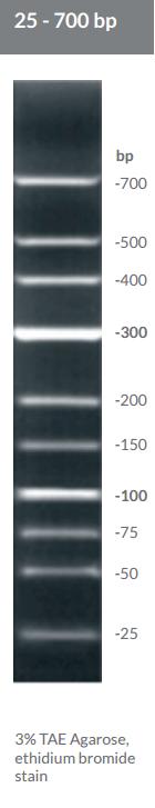 25 - 700 bp DNA Ladder