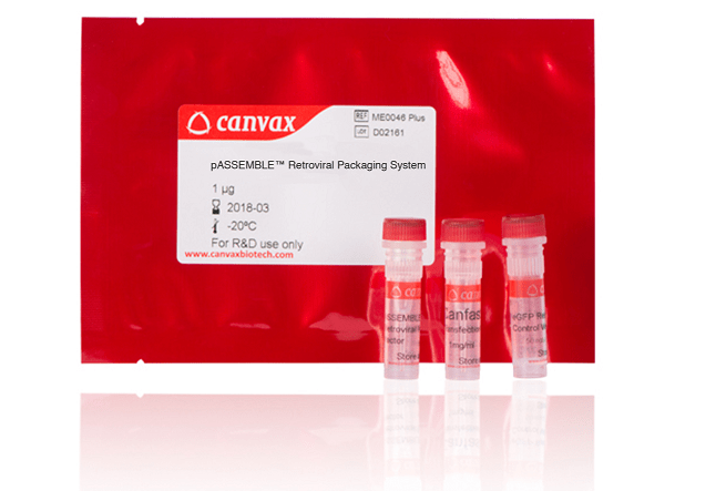 Retroviral and Lentiviral Packaging System