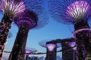 LabPro Singapore Pte. Ltd.