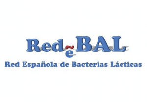 Canvax proudly becomes General Sponsor for RedBal Congress